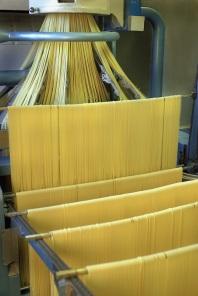 3.2- Spaghettoni Trafilatura