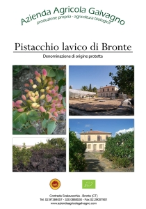 pistacchio-bannerfoto2ridimensionata