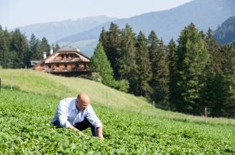 Alpe Pragas - Stefan_campo di frutta
